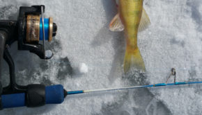 HT enterprises ultra light rod